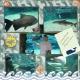 Living Planet Aquarium 2