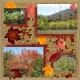 Fall Colors 2014