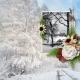 Winter Scene on Aunt Park Lane