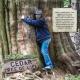 The Cedar Tree of Life