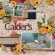 Calder's (Mood Board)
