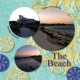 Cape Cod Beaches- Right