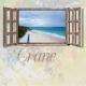 Window to Barbados 6