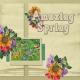 Amazing Spring