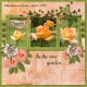 In a rose garden...