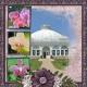 The Orchid Collection- Buffalo & Erie Co Botanical Gardens