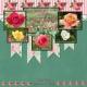 Tyler Rose Garden- 2