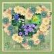 Zilker Botanic Gardens- Colorful Spring 2012