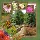Botanical Gardens on the Ozarks (adb designs)