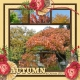AUTUMN in Denver 2013 (sher)