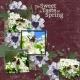 The Sweet Taste of Spring (GS)
