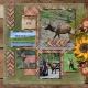 Wildlife in Yellowstone National Park- ELK (adb)