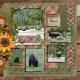 Wildlife in Yellowstone National Park- Bison (adb)