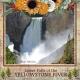 Lower Falls of the Yellowstone River (ADB)