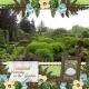 Serenity in the Garden (JDunn)