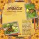A wonderful MIRACLE repeated each Autumn (JDunn)