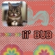 Famous Cats: Lil' Bub