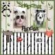 Panda snapchat