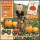 Pumpkin patch2