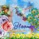 Bloom (remembering Spring)