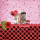 I love you (Ladybug Love)