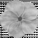 Flower #02 Template