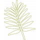 Palm Branch Outline 02- Template