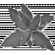 Leaf Cluster Template