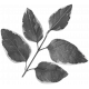 Leafy Branch Template