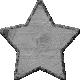 Outdoor Adventures- Element Template- Star Log Wood Chip