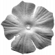 Silk Flower Template 010