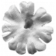 Flower 018 Template