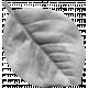 Leaf 002 Template