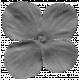 Flower 029 Template