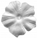 Flower 032 Template