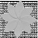 Flower 054 Template