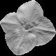 Flower 064 Template
