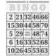 At The Fair- Bingo Card- Template
