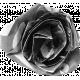 Paper Flower Template 002