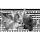 Leaf Cluster Template 01