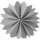 Accordion Paper Flower Template 014